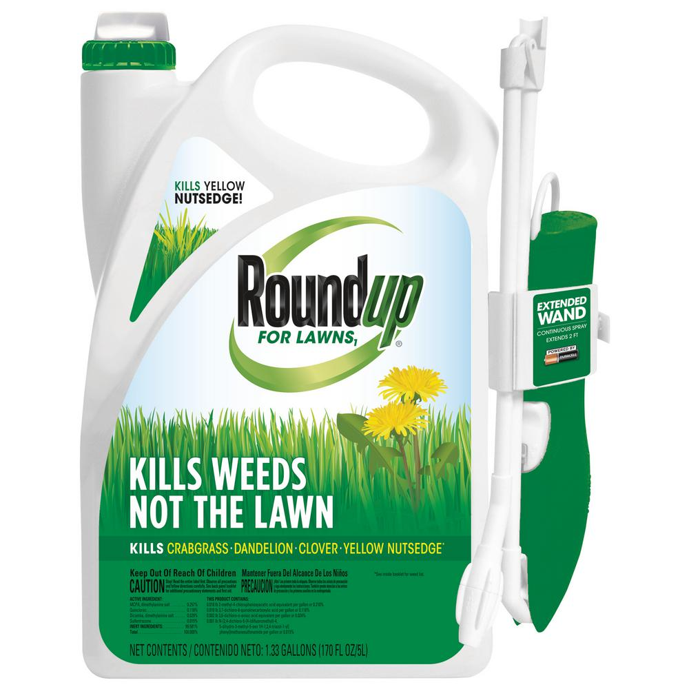 Roundup Roundup For Lawns 1 Ready To Use Wand Gal Northern 438501005 The Home Depot