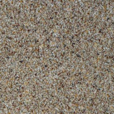 All The Best II - Color Newhaven Texture 12 ft. Carpet