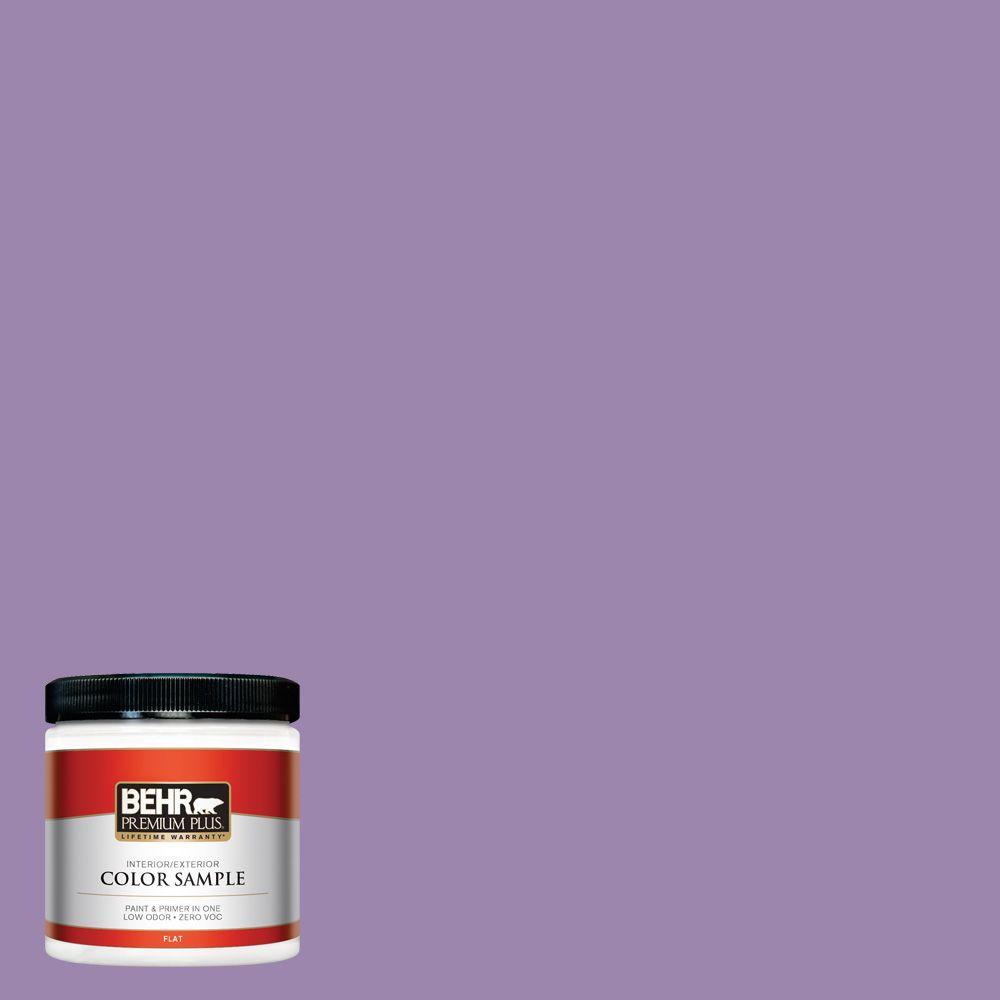 8 oz. #M570-5 Celeb City Interior/Exterior Paint Sample