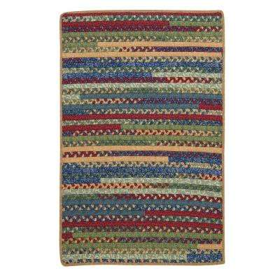Owen Sea Glass 4 ft. x 6 ft. Rectangle Braided Area Rug