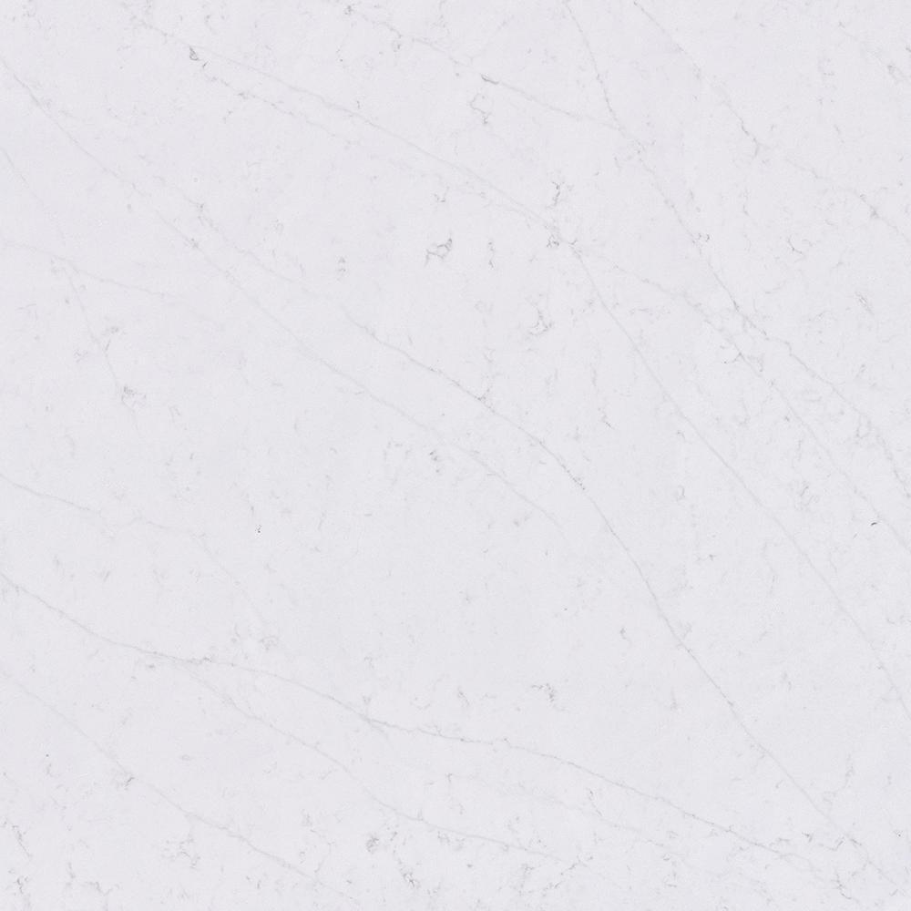 4 in. x 8 in. Quartz Countertop Sample in Statuario