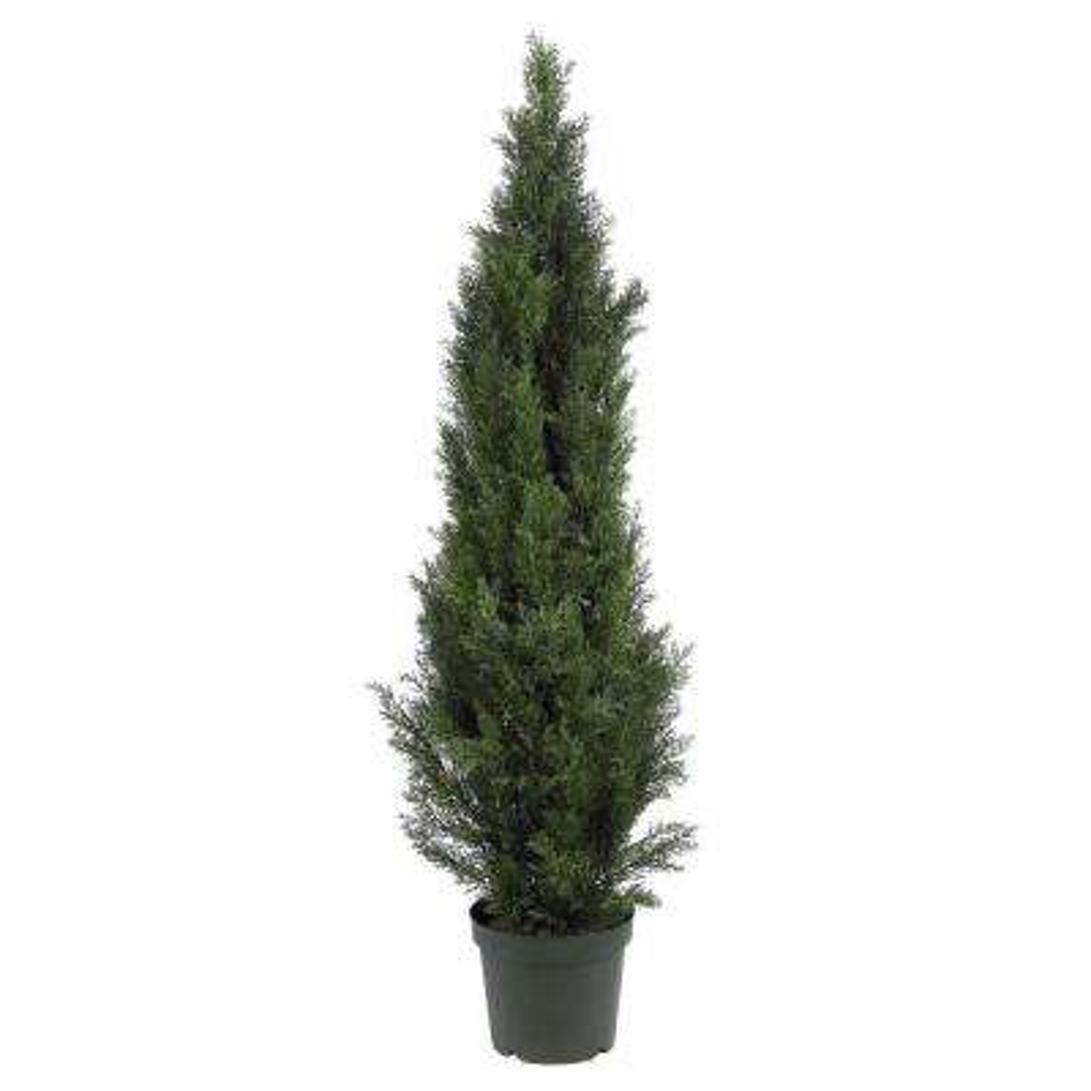 5 ft. Mini Cedar Pine Silk Tree