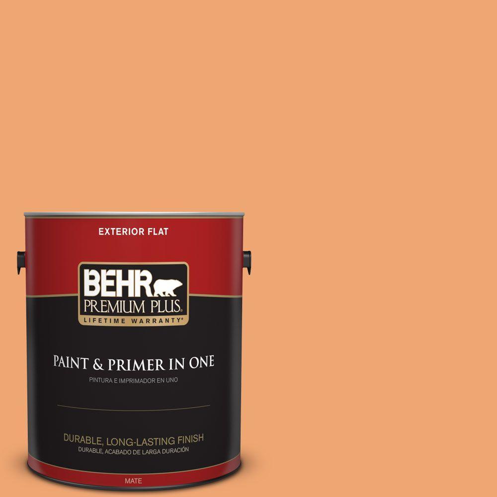 1 gal. #HDC-SP16-04 Apricot Jam Flat Exterior Paint