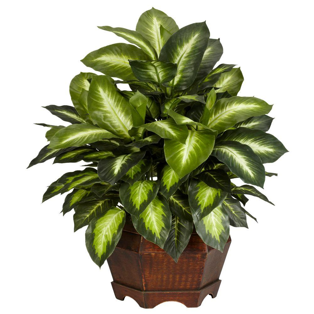 24 in. H Green Golden Dieffenbachia Silk Plant