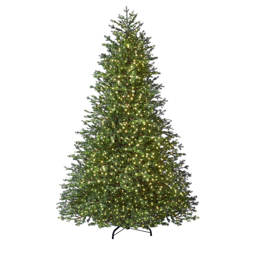 White Fir Christmas Tree: Home Accents Holiday 12 Ft. Pre-Lit LED Elegant Fir