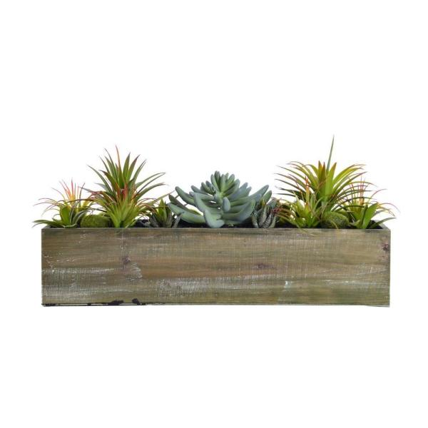 Laura Ashley 19 in. x 7 in. x 9 in. Tall Succulents in Wooden Pot