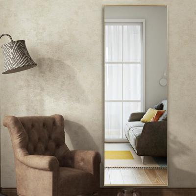 Oversized Rectangle Gold Hooks Contemporary Mirror (63 in. H x 18 in. W)