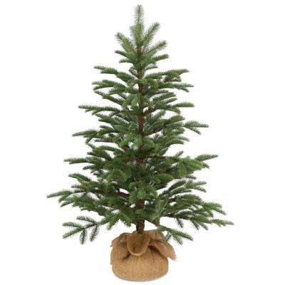 36 in. Norwegian Seedling Tree