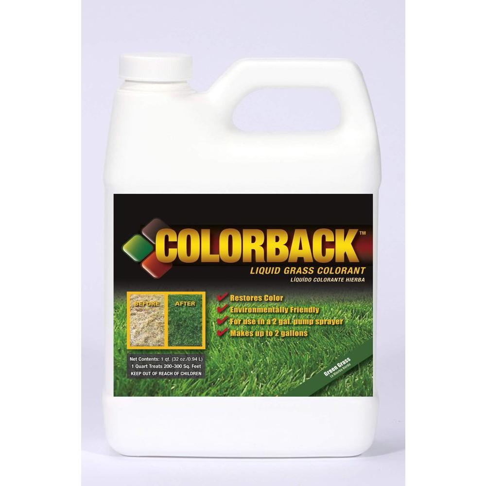 COLORBACK 32 oz. Green Grass Color Solution-DISCONTINUED