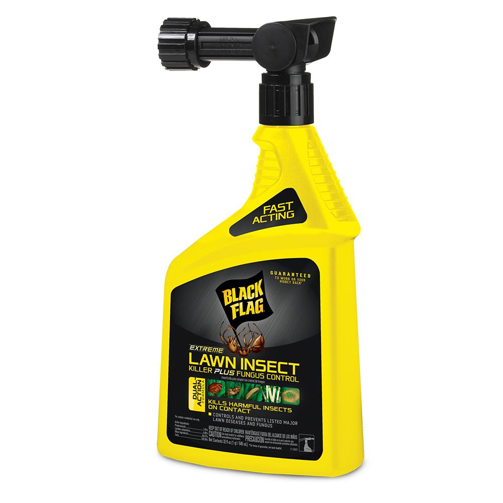 black flag extreme 32 oz ready to spray lawn insect killer plus