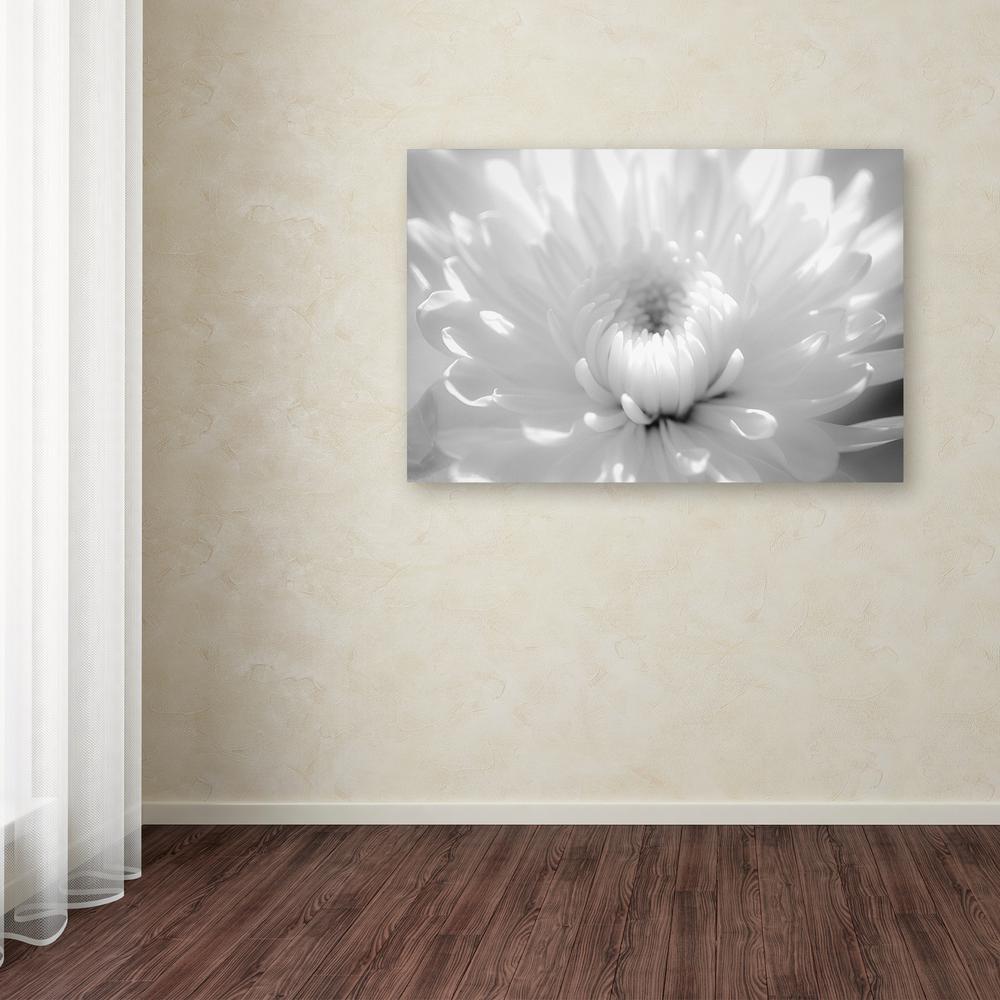 Trademark Fine Art 16 in. x 24 in. ''Infrared Flower 2''