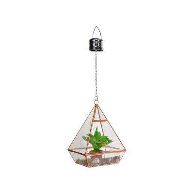 8 in. Tall Alpine Solar Terrarium with Succulent Accent and LED Lights