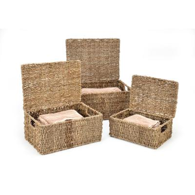 11 in. x 7 in. Rectangular Seagrass Baskets with Lids (3-Set)