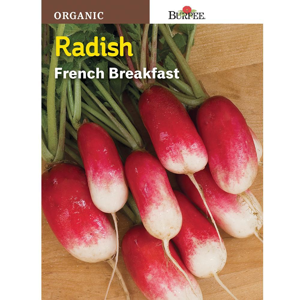 Radish French Breakfast Vegetable Seeds