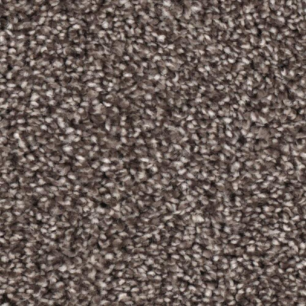 Scout's Crossing II - Color Vanguard Texture 12 ft. Carpet