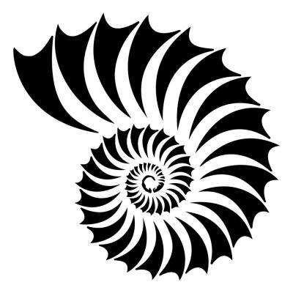 Nautilus Shell Stencil (10 mil Plastic)