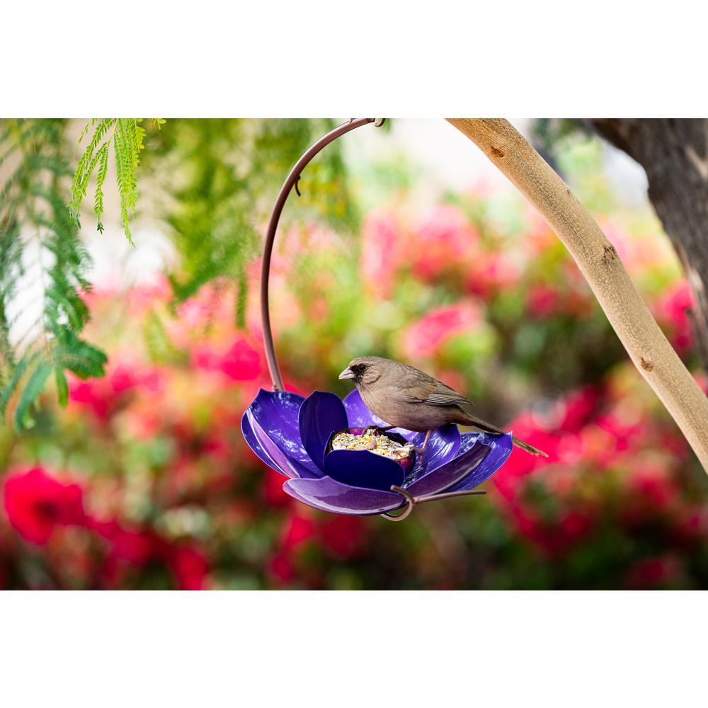 Purple Prince Magnolia Bird Feeder