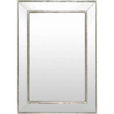 Pieter 40 in. x 28 in. Traditional Framed Mirror