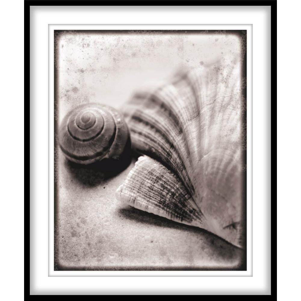 """9.75 in. x 11.75 in. """"Ocean Treasures""""Framed Wall Art"""
