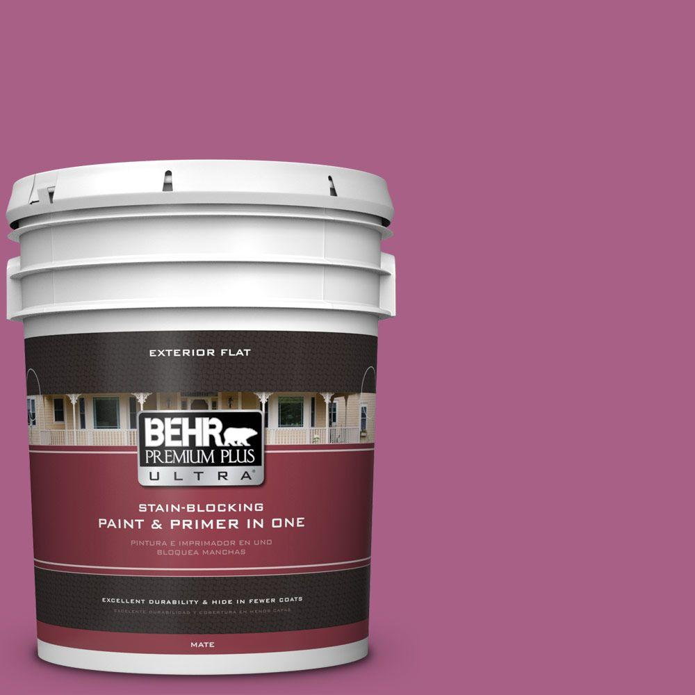 5-gal. #690B-6 Wild Mulberry Flat Exterior Paint