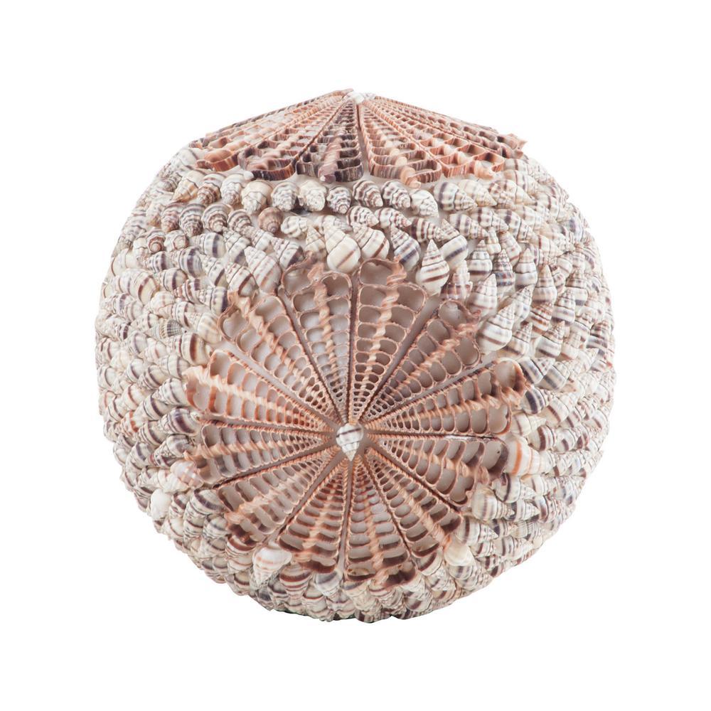 Sliced Spiral Ball Natural Shell Sculpture
