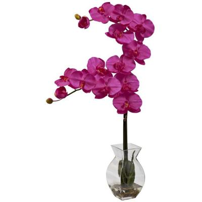 Phalaenopsis Orchid with Vase Arrangement in Beauty