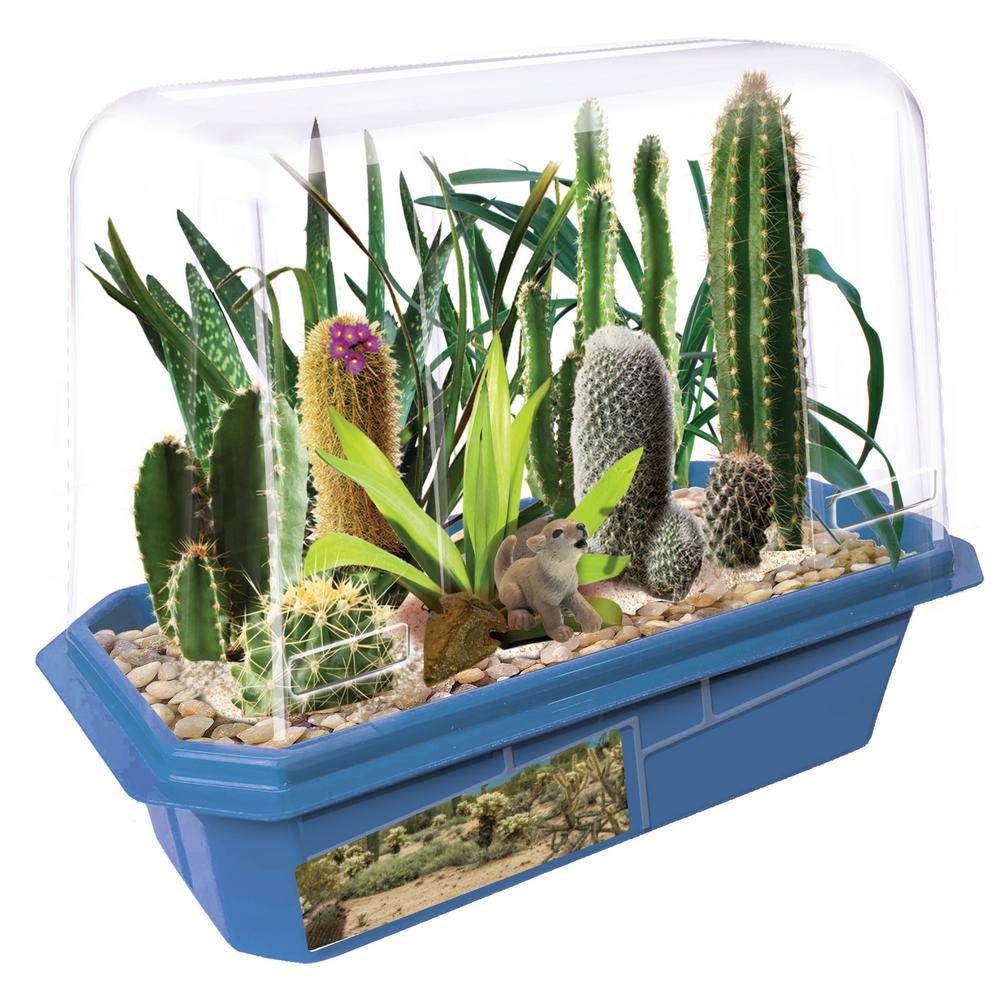 Miniature World Clear Plastic Desert Plant Collection Indoor Garden Terrarium Indoor Garden Seed Starter Kit