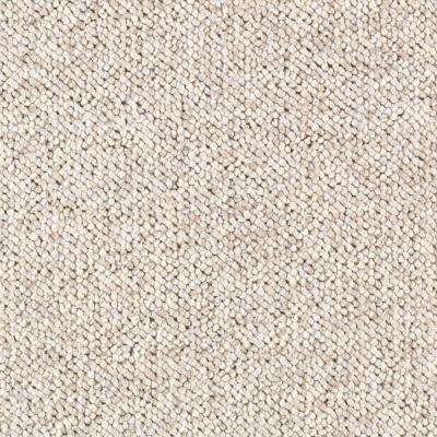 Carpet Sample - Tidewater - Color Beachfront Loop 8 in x 8 in