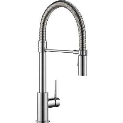 Trinsic Single-Handle Pull-Down Sprayer Kitchen Faucet with Spring Spout in Chrome
