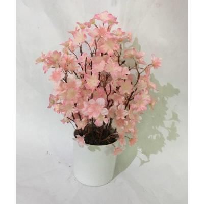 14 in. Pink Cherry Blossom in White Pot