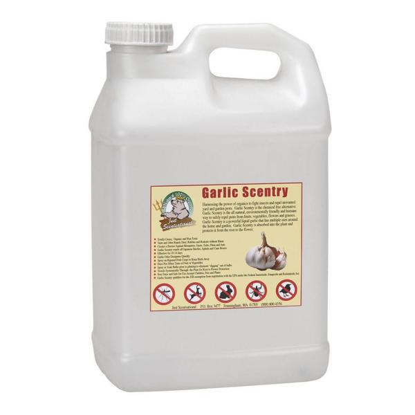 2.5 Gal. Garlic Scentry Concentrate