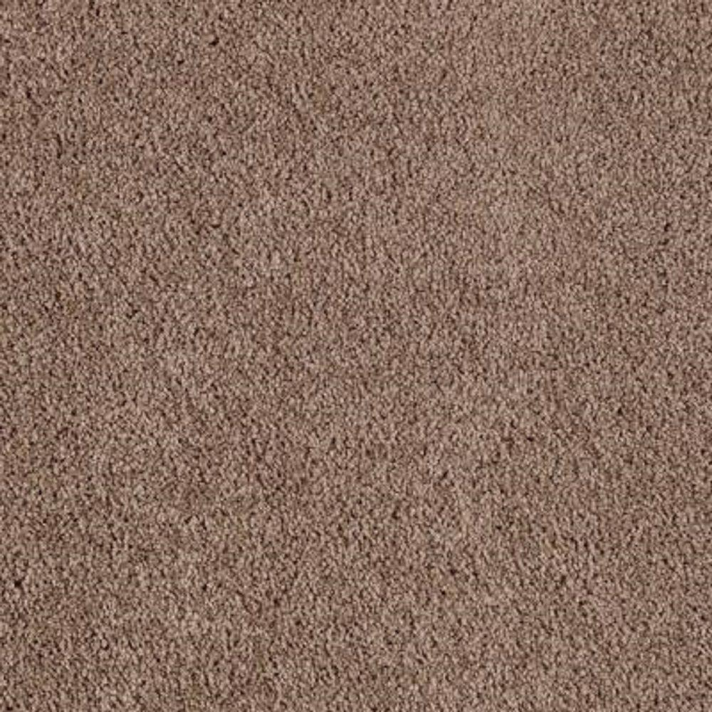Lifeproof Carpet Sample Barons Court Ii Color Cocoa