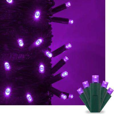 17 ft. 50-Light Purple 5 mm LED Mini Light Set
