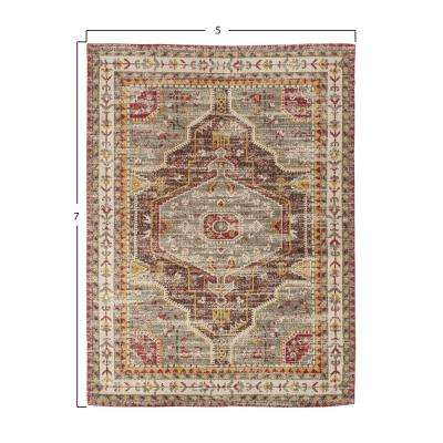 Multicolor 5 ft. x 7 ft. Distressed Area Rug
