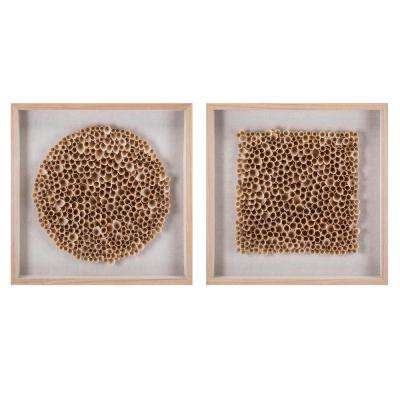 Halimeda Art Shadowboxes (2-Pack)