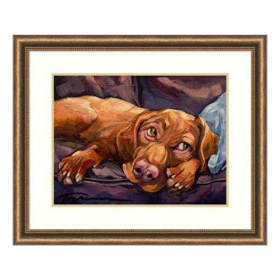 """Beauty Rest"" by Connie R. Townsend Framed Wall Art"
