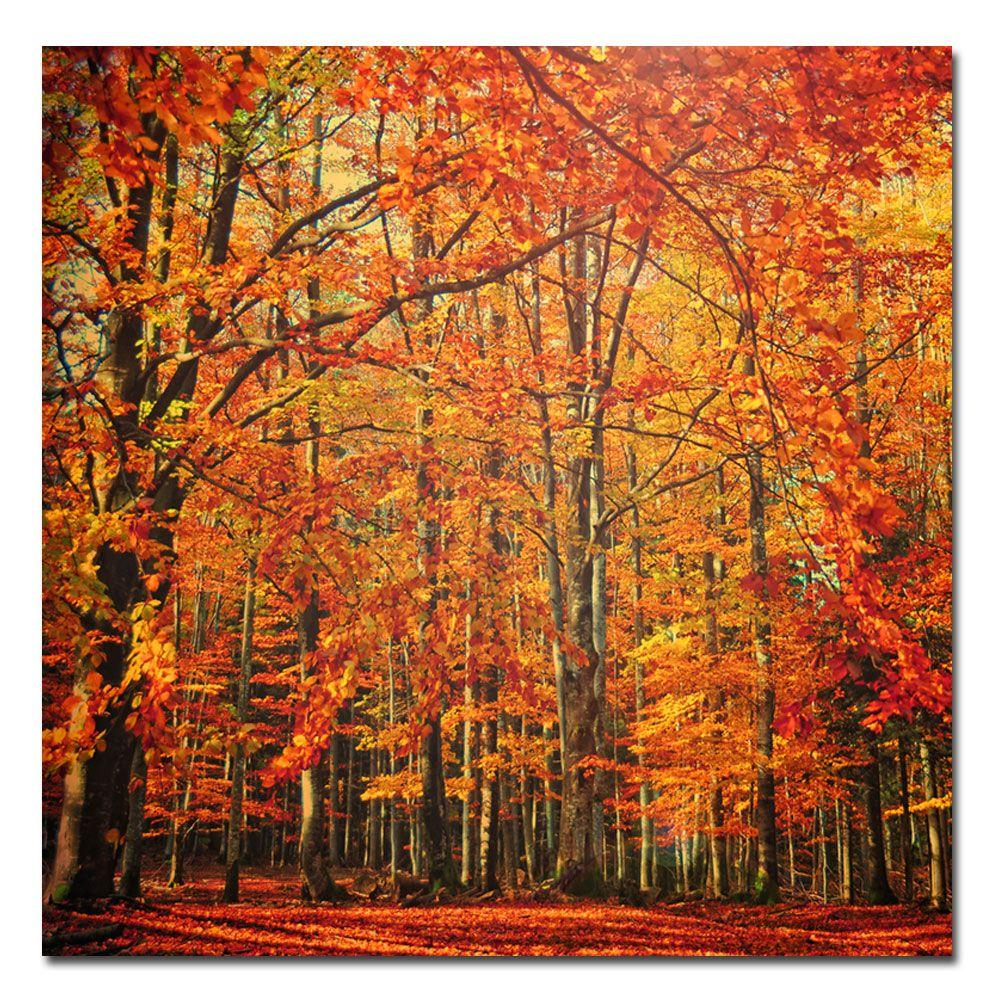 24 in. x 24 in. Red November Canvas Art