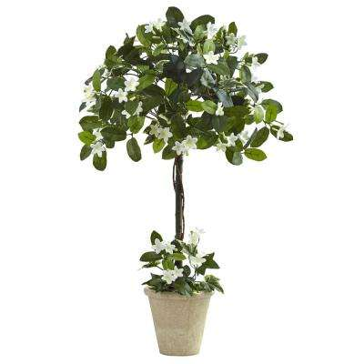 beige/bisque - artificial plants & flowers - home accents - the home 3 Ft Artificial Plants
