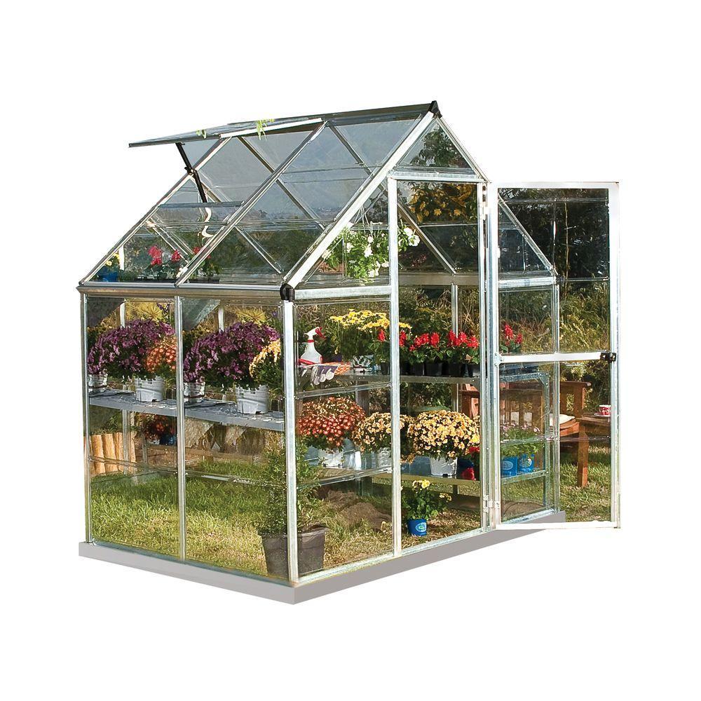 Kitchen Garden Greenhouse Window: Palram Harmony 6 Ft. X 4 Ft. Polycarbonate Greenhouse In