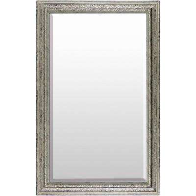 Joni 30 in. x 47 in. Polystyrene Framed Mirror