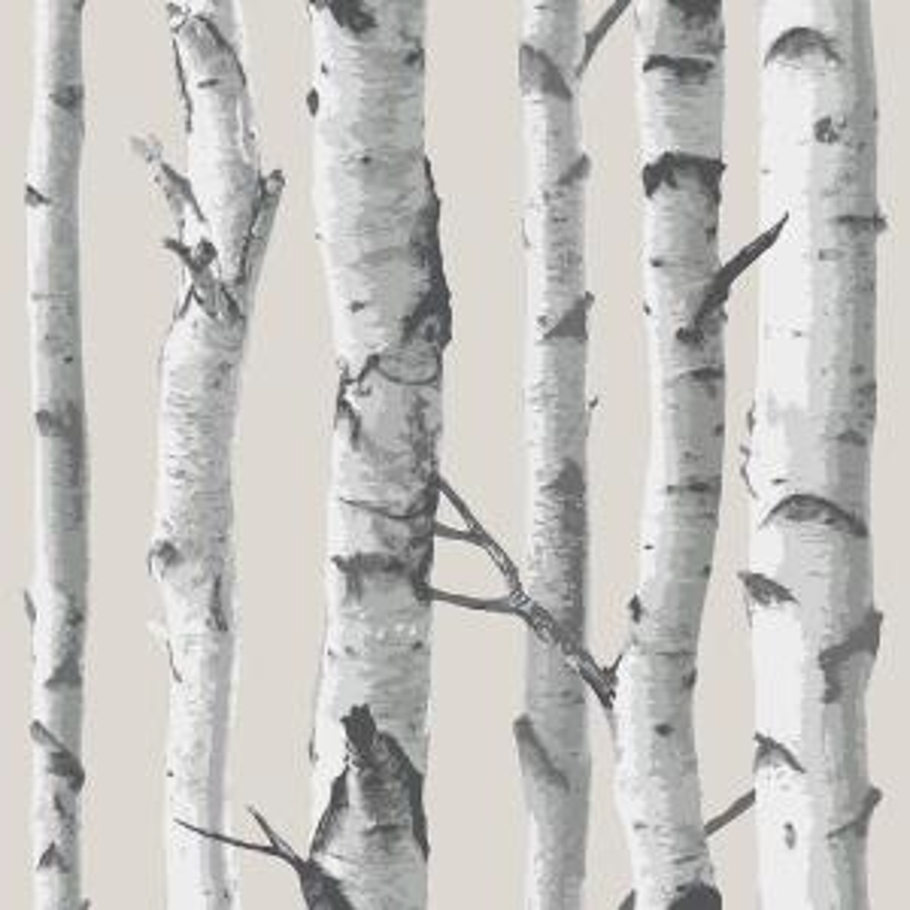 NuWallpaper Multi Color Birch Tree Wallpaper by NuWallpaper
