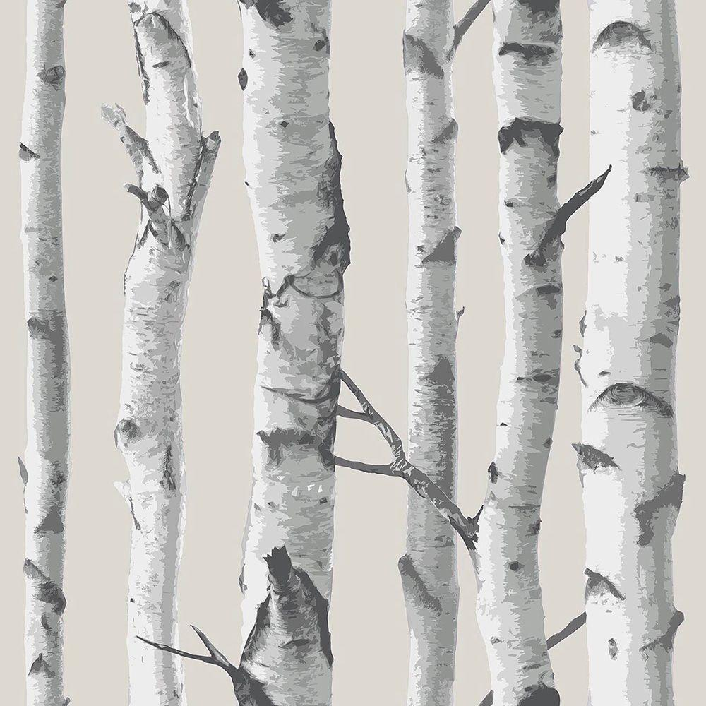 NuWallpaper Multi Color Birch Tree Peel And Stick Wallpaper Sample