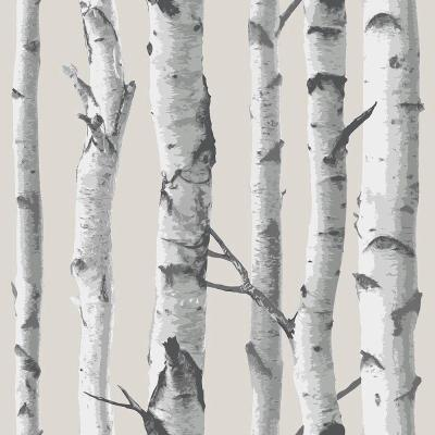 Multi Color Birch Tree Peel and Stick Wallpaper Sample