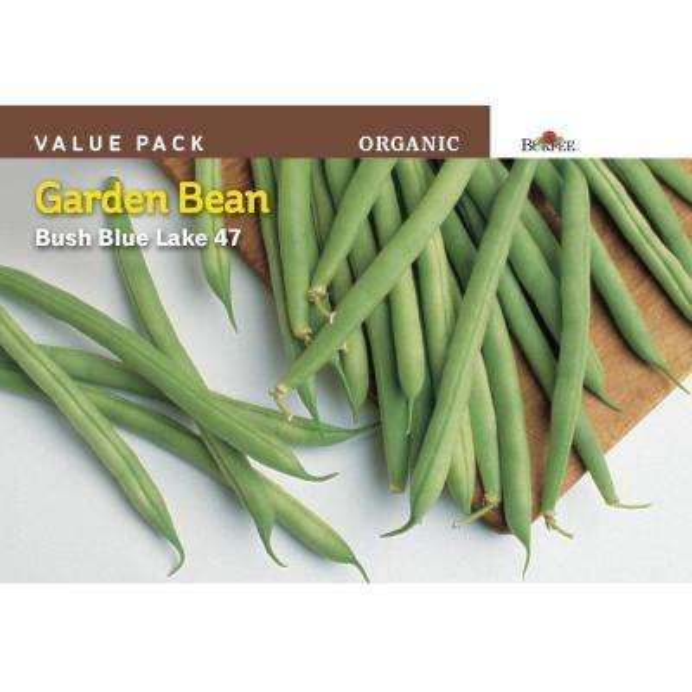 Bean Bush Snap Blue Lake 47 Organic Value Pack Seed