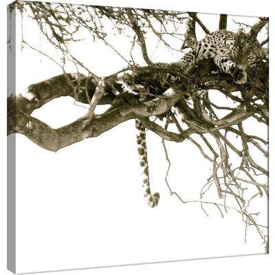 15.in x 15.in ''Resting Leopard'' Printed Canvas Wall Art