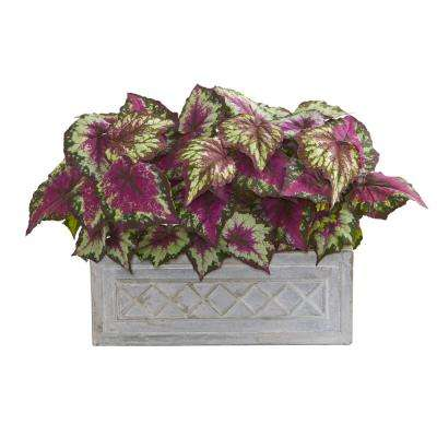 Indoor 17 in. Wax Begonia Artificial Plant in Stone Planter