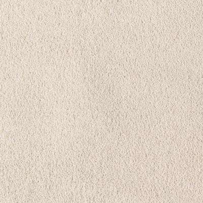 Carpet Sample - Windfall (T) - Color Raffia Textured 8 in. x 8 in.