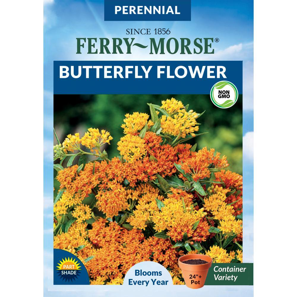 Butterfly Flower Seeds