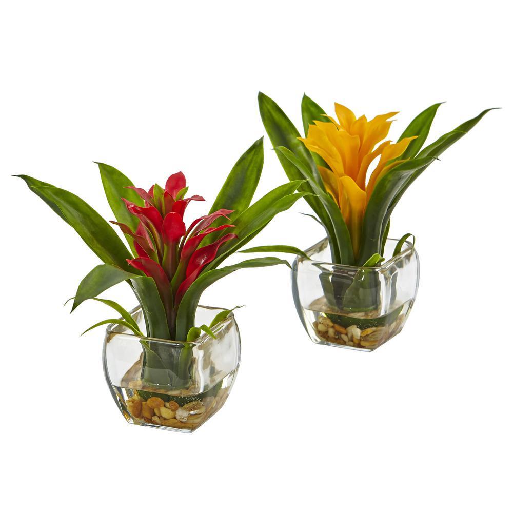 Bromeliad with Vase Arrangement (Set of 2)