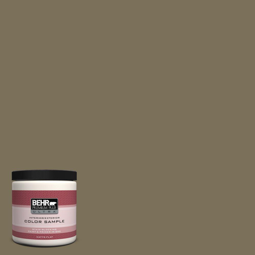 8 oz. #380F-7 Crocodile Matte Interior/Exterior Paint and Primer in One